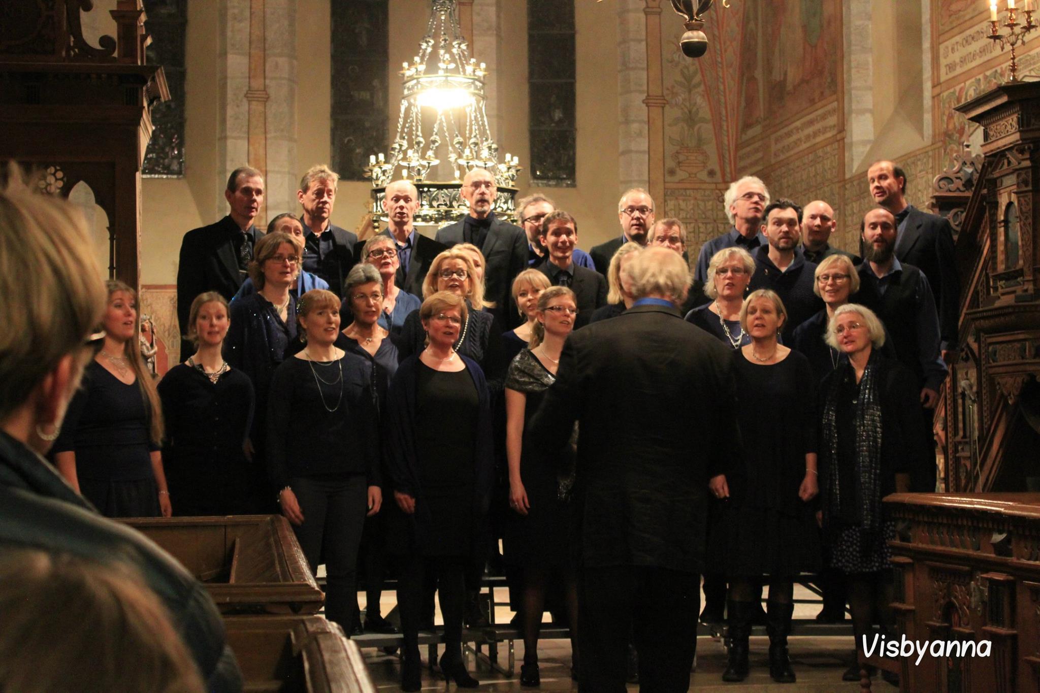 Adventskonsert i Dalhem kyrka 4/12. Foto: Anna Lindskog